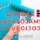 Dažytojai Norvegijoje