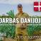 Darbas Danijoje porų ir kalafiorų ūkyje