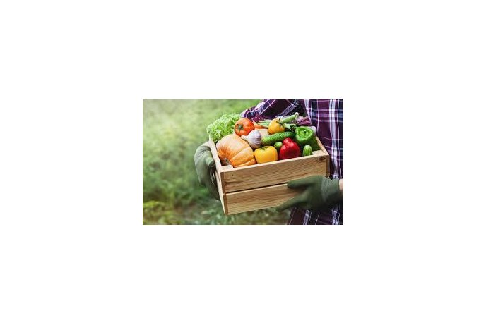 Vaisių/ daržovių rūšiavimas ir pakavimas